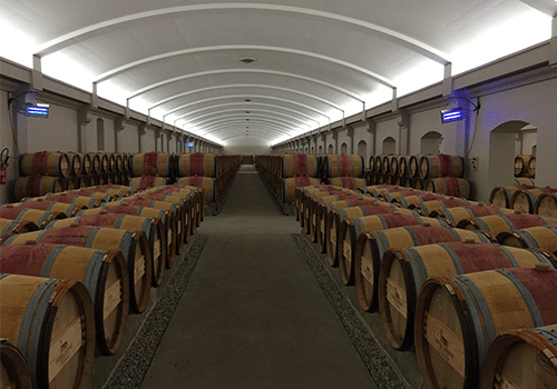 wine-barrels-bordeaux